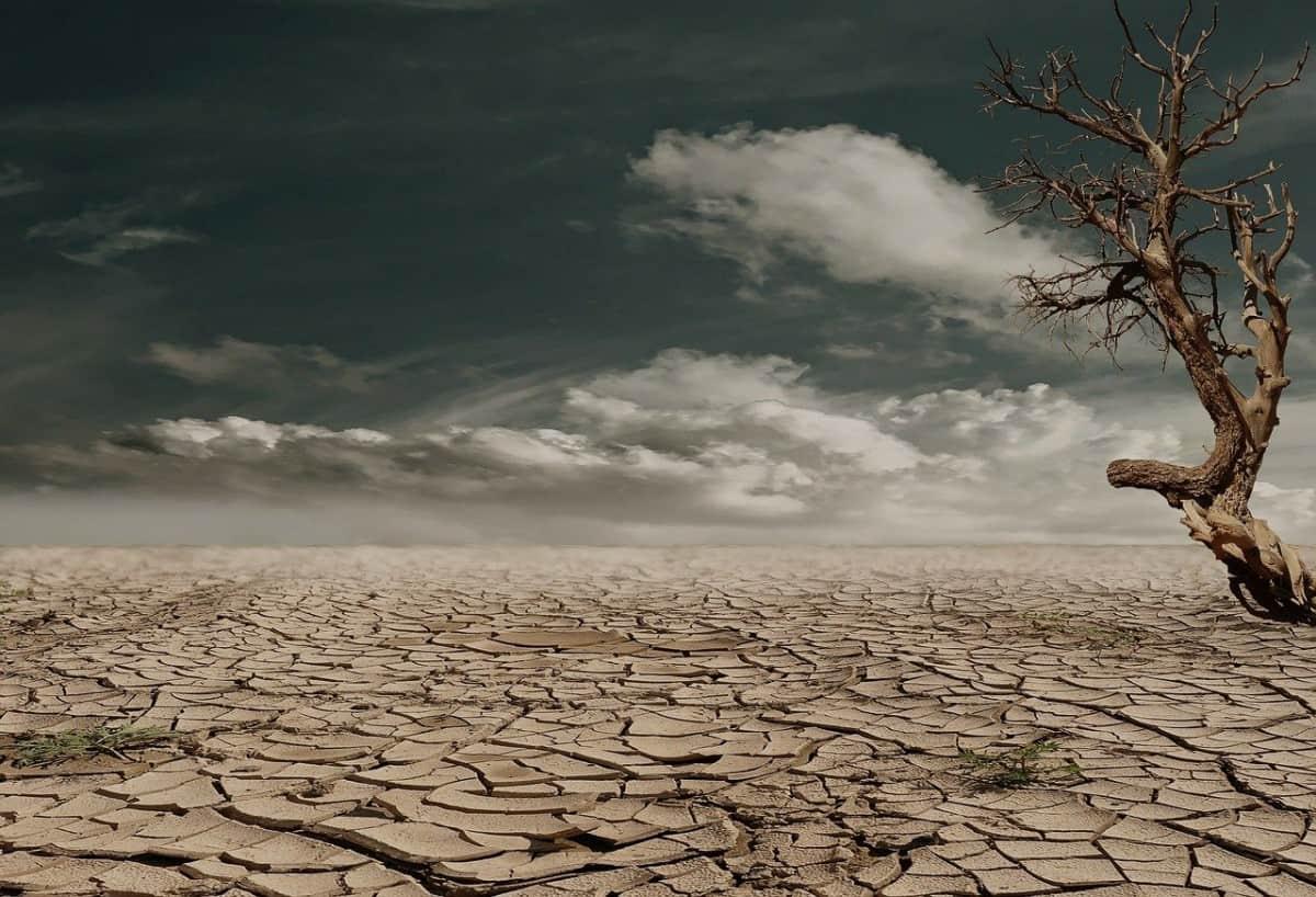 drought in desert
