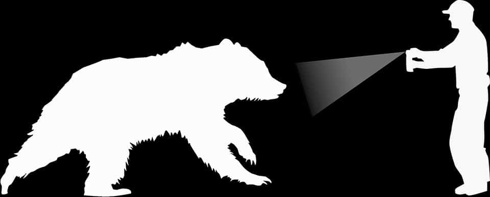 bear spray outline national park service